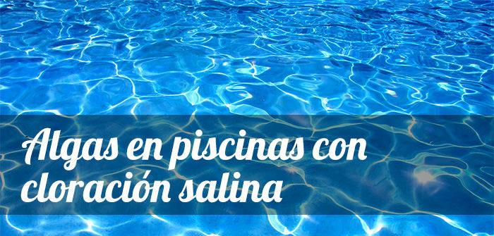algas en piscinas con cloracion salina